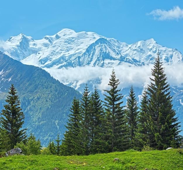 Masyw górski mont blanc (dolina chamonix, francja, widok z obrzeży plaine joux).