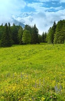 Masyw mont blanc (dolina chamonix, francja, widok z przedmieść plaine joux).