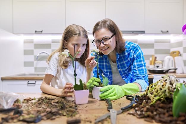 Matka i córka dziecko sadzenie roślin orchidei phalaenopsis w doniczkach razem, tło wnętrza kuchni