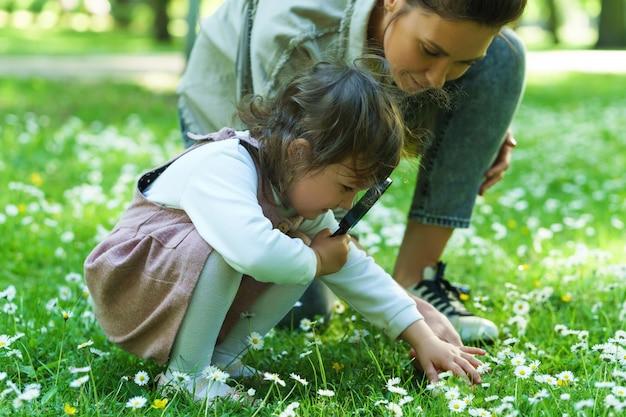 Matka i córka z lupą badają pole rumianku w miejskim parku
