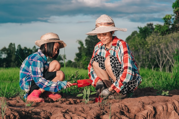 Matka i dzieci sadzą drzewo na ziemi na polu ryżowym i tle niebieskiego nieba