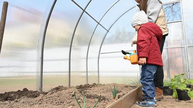 Matka uprawia ekologiczne warzywa w swojej szklarni.