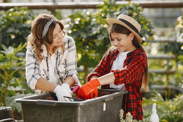 Matka z córką. pracownicy z kwiatostanami. kobieta przesadzająca roślinę do nowej doniczki
