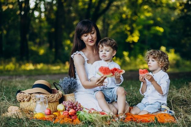 Matka z synami na pikniku w parku