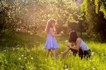 Matki i córki zbieracki dandelion kwitnie w parku