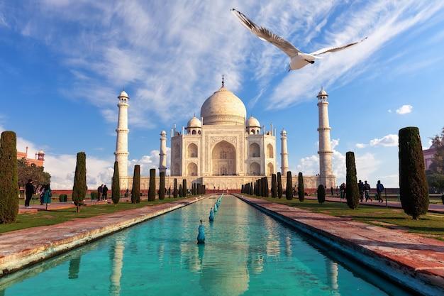 Mauzoleum taj mahal, słynny widok indii, agra.