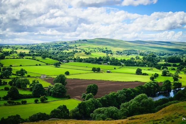 Meandrująca rzeka toruje drogę przez luksusowej zielonej wiejskiej ziemi uprawnej w uk