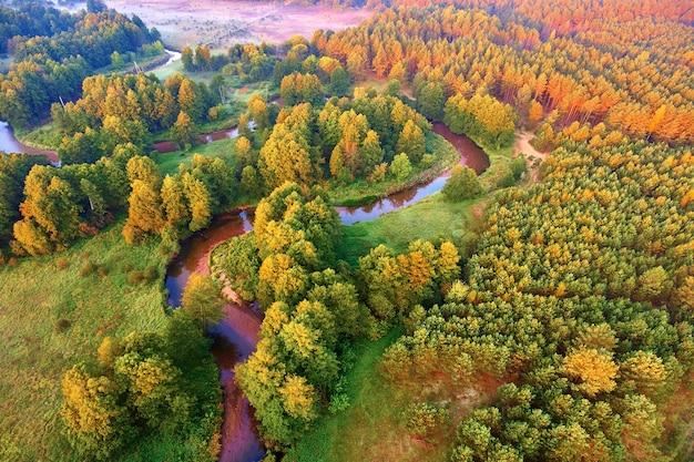 Meandrujący widok na las rzeczny z wysokości
