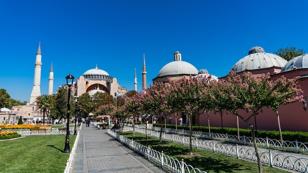 Meczet hagia sophia w sultanahmet, stambuł, turcja.