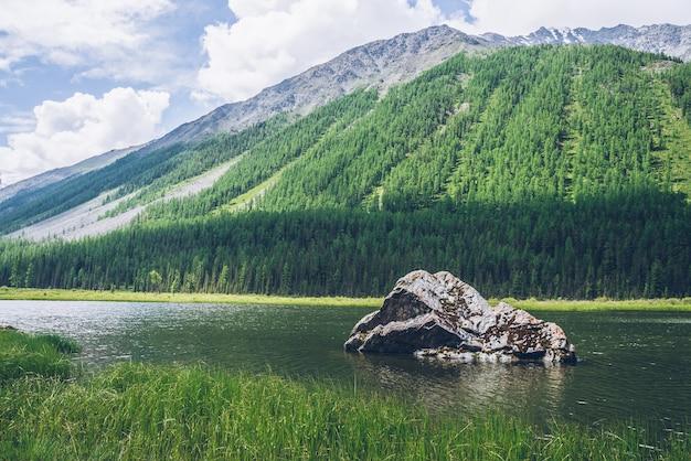 Medytacyjny widok na piękne jezioro z kamieniem w dolinie na tle góry z lasem.