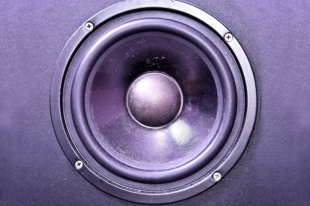 Membrana głośnikowa.