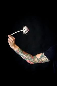 Męska ręka z suchym kwiatem karczocha na białym tle