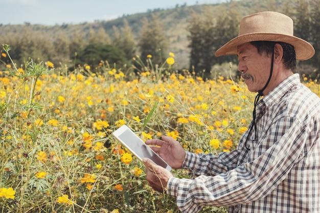 Męski azjatycki rolnik używa cyfrową pastylkę w kwiatu gospodarstwie rolnym