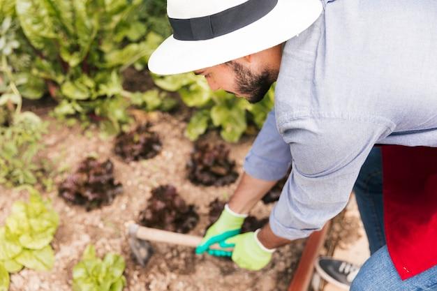 Męski ogrodnik kopiący ziemię w ogrodzie warzywnym