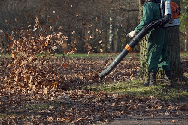 Męski pracownik usuwa liść dmuchawy trawnik jesień ogród.