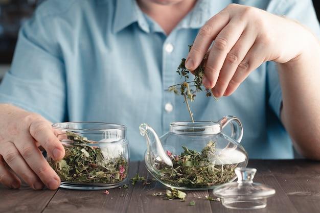Męskie dłonie wkłada do czajnika herbatę ziołową