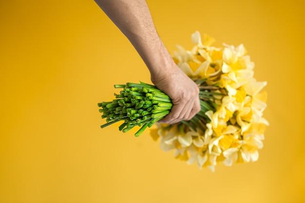Męskie dłonie z bukietem żółtych żonkili. pojęcie pozdrowienia i dzień kobiet.