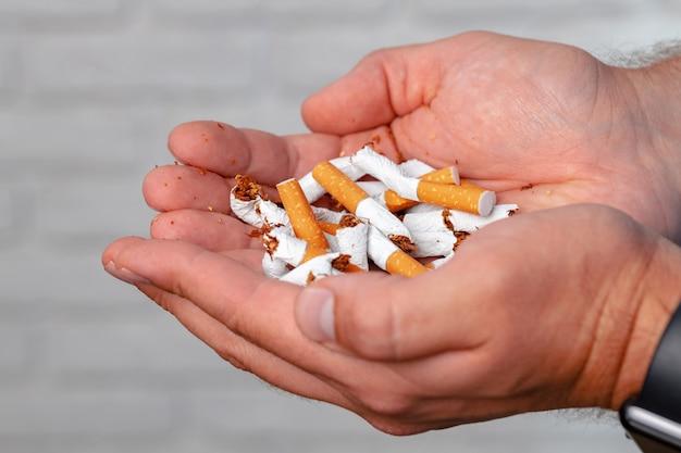 Męskie ręce trzymając połamane papierosy do rzucenia koncepcji nawyku
