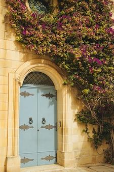 Metalowe drzwi starego białego budynku ozdobione rośliną z fioletowymi kwiatami