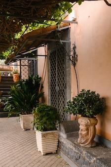Metalowe drzwi z roślinami