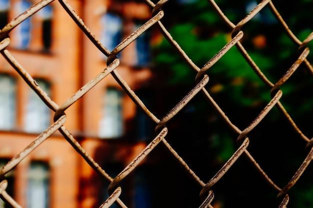 Metalowe ogrodzenie przed budynkiem obok wysokiego, zielonego drzewa