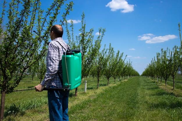 Mężczyzna agronom traktujący jabłonie pestycydami w sadzie