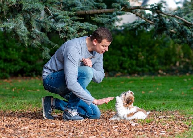 Mężczyzna bawi się ze szczeniakiem shih tzu na zewnątrz, szkolenia psów w parku