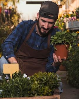 Mężczyzna dbanie o kwiaty