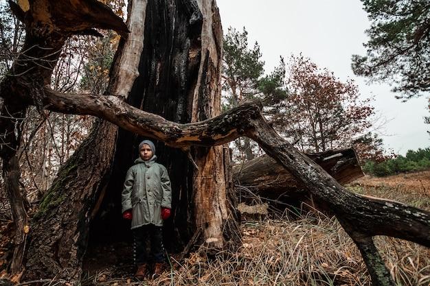 Mężczyzna dziecka pozycja wśrodku drzewnego bagażnika