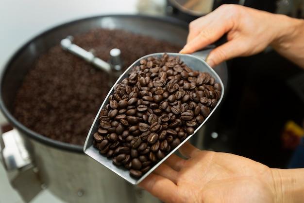 Mężczyzna gospodarstwa ziarna kawy w dwóch rękach, sprawdzanie jakości po prażone przez nowoczesnych maszyn