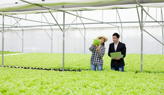 Mężczyzna i kobieta sprawdzają warzywa hydroponiczne na farmie