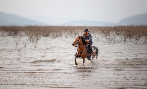 Mężczyzna jeździecki koń na polu podczas zmierzchu w jeziorze