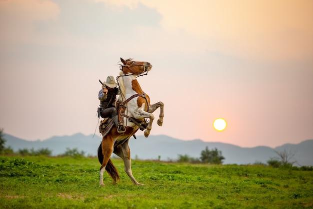 Mężczyzna jeździecki koń na polu podczas zmierzchu