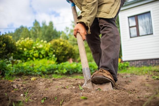 Mężczyzna kopie ziemię łopatą w ogrodzie w ogrodzie w letni słoneczny dzień