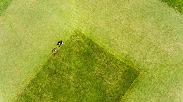 Mężczyzna koszenia trawy na trawniku