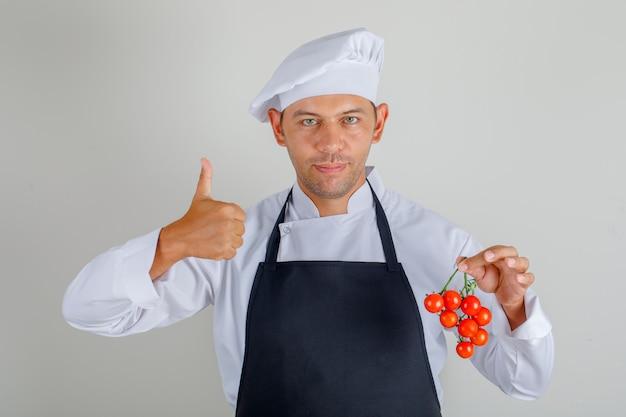 Mężczyzna kucharz trzyma pomidory i pokazuje kciuki w kapelusz, fartuch i mundur