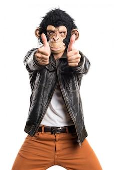 Mężczyzna małpa czyni gest zwycięstwa