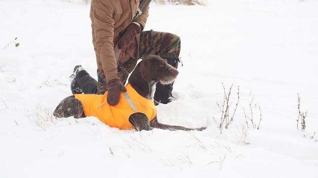 Mężczyzna myśliwy patrzy na swojego zmęczonego psa myśliwskiego po polowaniu
