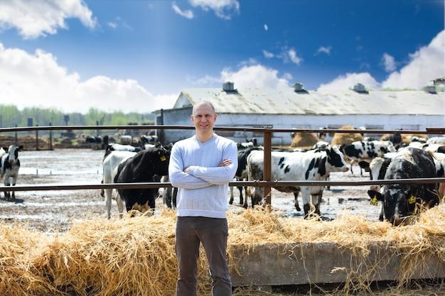 Mężczyzna na krowach gospodarstwa