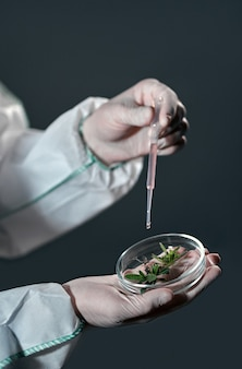Mężczyzna naukowiec w kombinezonie ochronnym trzyma i bada próbki z roślinami odizolowanymi na czarno.