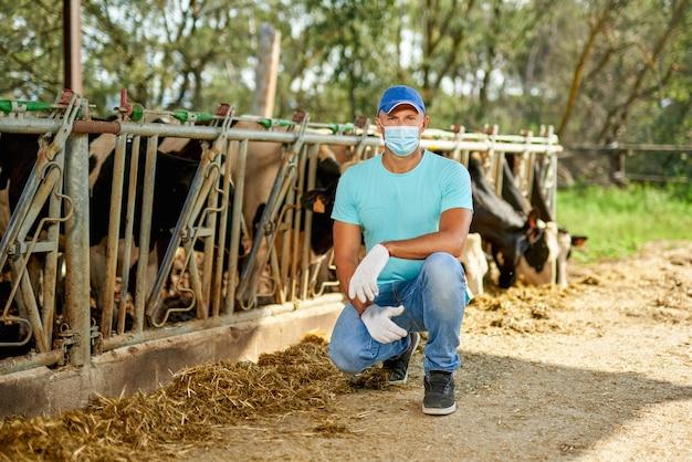 Mężczyzna noszący maskę antywirusową ma problemy na farmie z krowami mlecznymi.