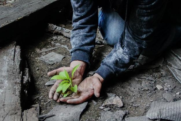 Mężczyzna o brudnych rękach trzyma małą roślinę, która wyrosła wśród gruzu budowlanego