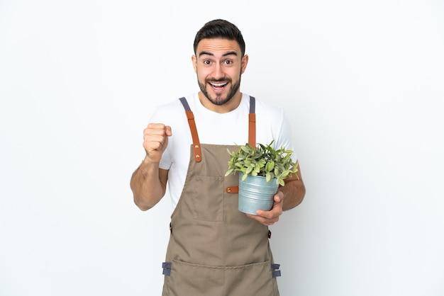 Mężczyzna ogrodnik gospodarstwa roślin na białym tle na białym tle świętuje zwycięstwo w pozycji zwycięzcy