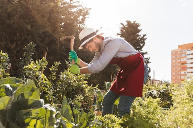 Mężczyzna ogrodnik kopanie ziemi motyką w ogrodzie