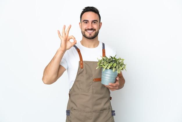 Mężczyzna ogrodnik posiadający roślinę na białym tle przedstawiający znak ok palcami