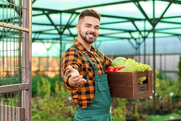 Mężczyzna ogrodnik ze zbiorami w szklarni