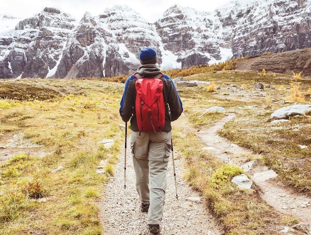 Mężczyzna Piesze Wycieczki W Kanadyjskich Górach. Wędrówka Jest Popularną Formą Rekreacji W Ameryce Północnej. Premium Zdjęcia