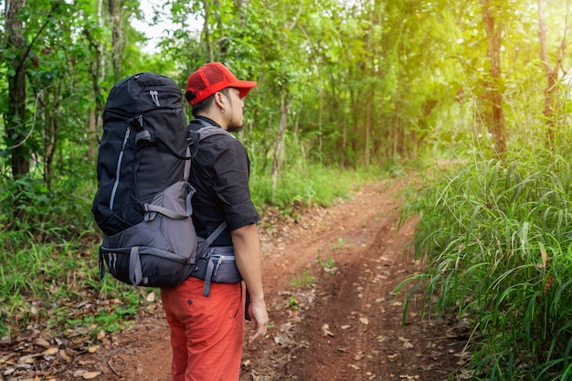 Mężczyzna podróżnik z plecakiem i mapą w lesie