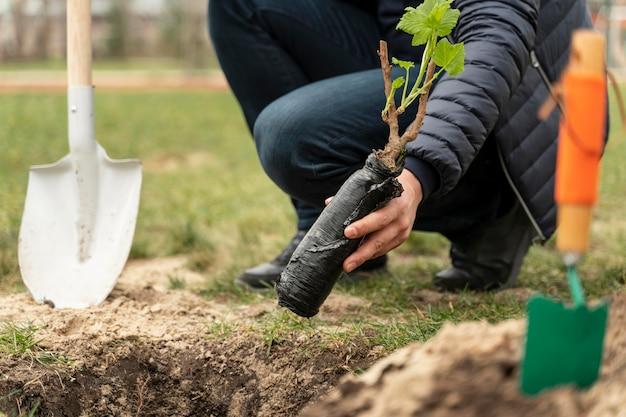 Mężczyzna poszycia w ziemi małe drzewo