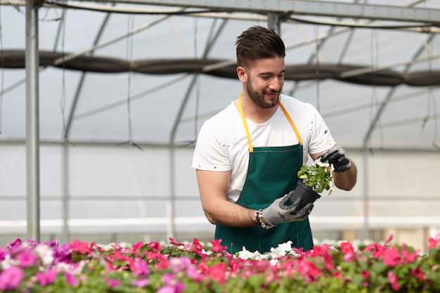 Mężczyzna pracuje w ogrodowym sklepie